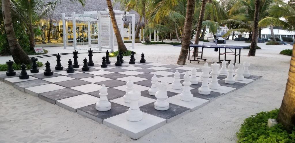 チェスができる!