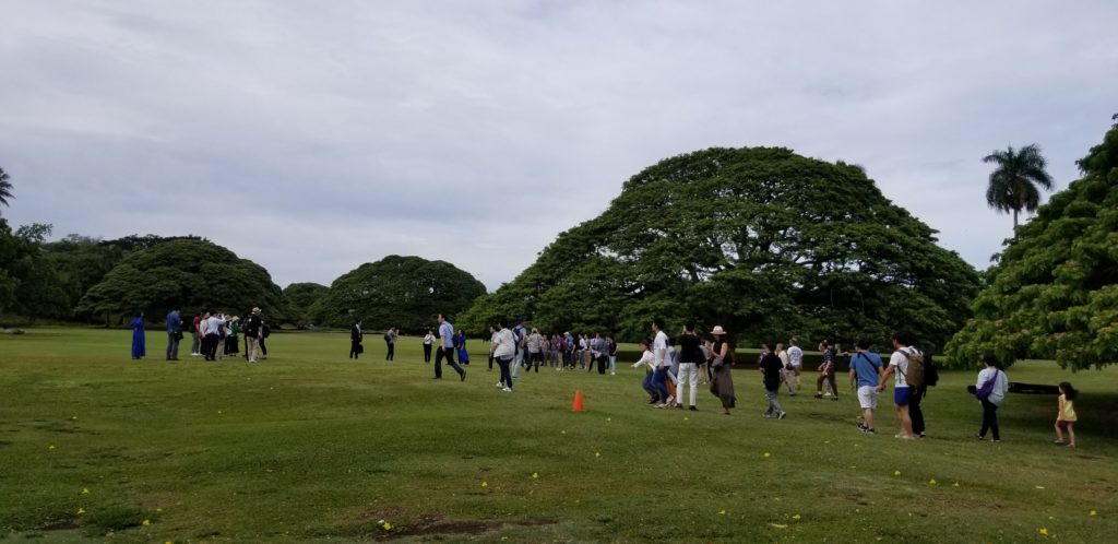 この木なんの木を観光するのは日本人だけ