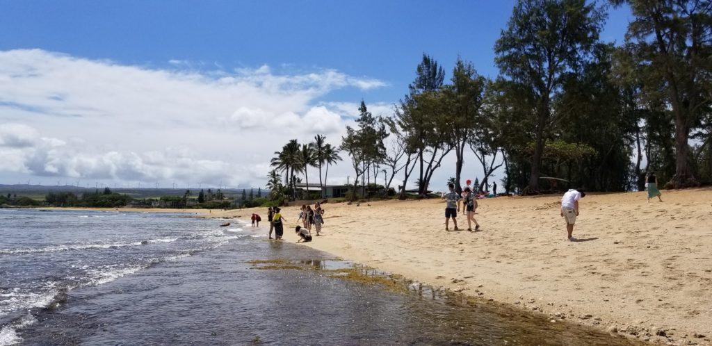 ハワイのサンライズシェルビーチ